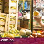 Con gira frutícola impulsarán comercialización para productores del Meta