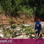 Poda de árboles para prevenir emergencias en caños