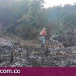 Autoridades Contra los Incendios Forestales