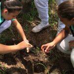 Cormacarena Conmemora el Día Mundial de la Tierra