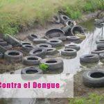 Contra el Dengue, Zika y Chicunguña