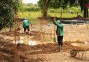 La Construcción de Escuelas Rurales Avanza un 10 por Ciento