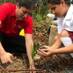4.600 Palmas de Moriche Serán Plantadas en Puerto Gaitán