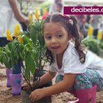 Instituciones Educativas a Construir Entornos Ambientales