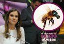 Por año, en el país, desaparecen alrededor de 10.500 colmenas de abejas.