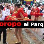 CONCIERTO 'JOROPO AL PARQUE'