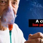 ¿Sabe cómo prevenir una enfermedad pulmonar?