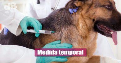 Trasladarán puestos de vacunación antirrábica de La Esperanza y Porfía