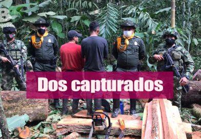 Nuevo operativo contra la deforestación en la capital del Meta