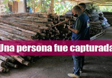 Incautada madera sin documentación en vía a  Puerto Lleras