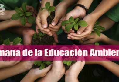 Aprendizaje y nuevas experiencias ofrecerá Cormacarena