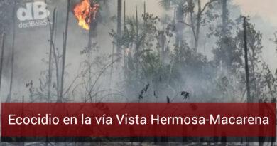 Más de 100 hectáreas de bosque quemadas en el parque La Macarena