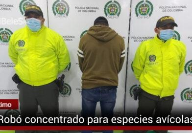 Hombre de 49 años capturado por hurto